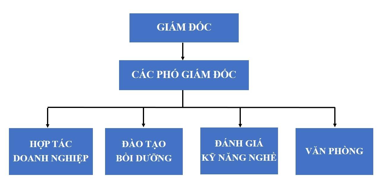 Cơ cấu tổ chức Trung tâm Hợp tác doanh nghiệp